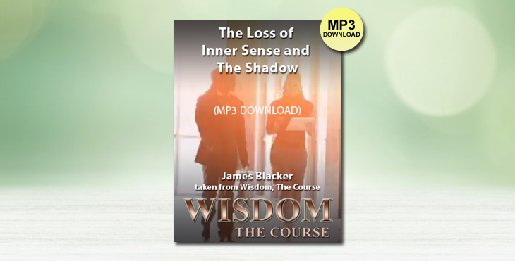 The Loss of Inner Sense and The Shadow